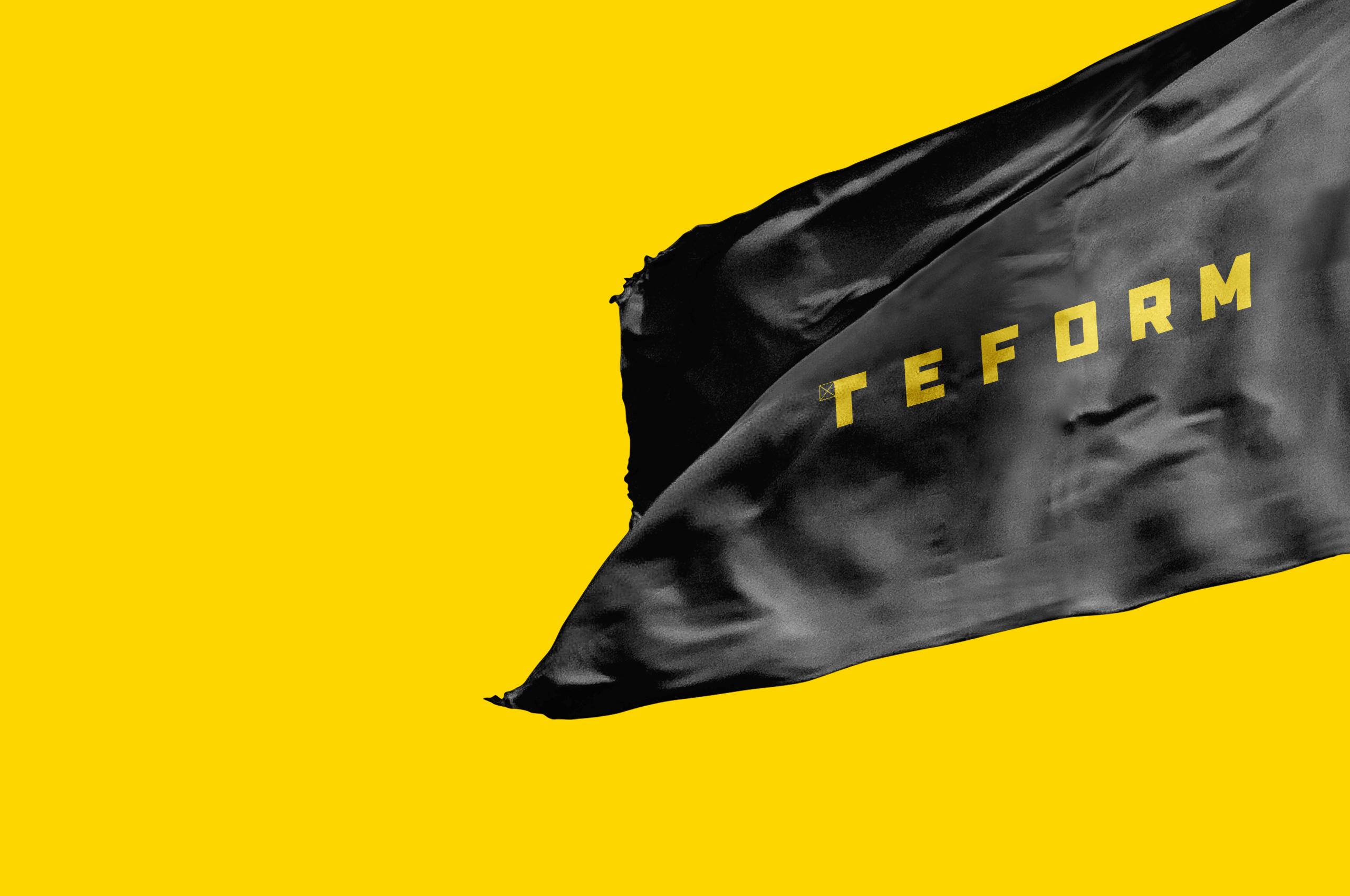 teform-primary-flag